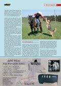 Mit vier Hufen und vier Pfoten durch den Parcours - Sabine Lang - Seite 3