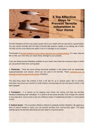 5 Top Effective Ways to Prevent Termite Infestation in Your Home