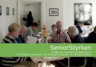 SeniorStyrken: 3-dages kursus (pdf) - Aarhus.dk
