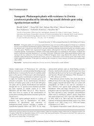 Transgenic Phalaenopsis plants with resistance to Erwinia - Wdc-jp.biz