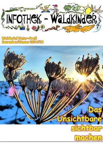 Infothek Waldkinder - Blick in den Dezember/Januar 2014/15