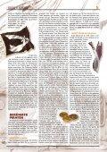 piraterie & seefahrt ringkabale nordseepiraten unter ... - Anduin - Seite 5