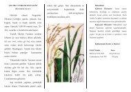 tarla hazırlığı - Samsun Tarım İl Müdürlüğü