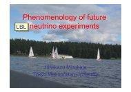 Phenomenology of future neutrino experiments