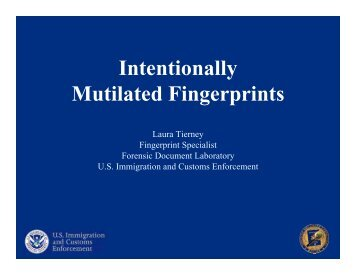 Mutilated Fingerprints Intentionally - Projects at NFSTC.org