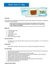 Water Cycle in a Bag Activity