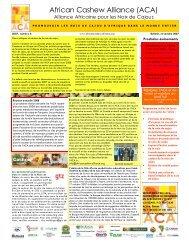 ACA Newsletter nr 6 November 2007-French