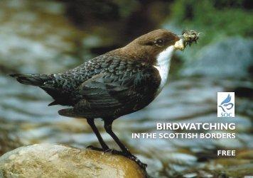 bird watching - The Scottish Ornithologists' Club