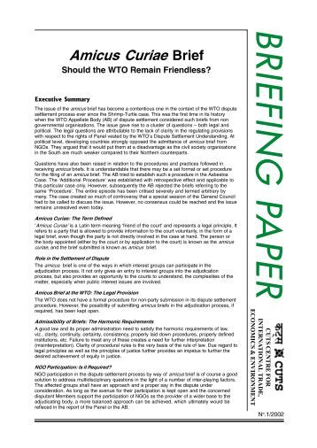 Amicus Curiae Brief- Should the WTO Remain Friendless?