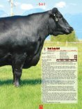 Jocko Valley cattle - Angus Journal - Page 5