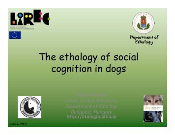 The ethology of social cognition in dogs