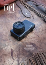 SIGMA DP1 Merrill brochure 2012