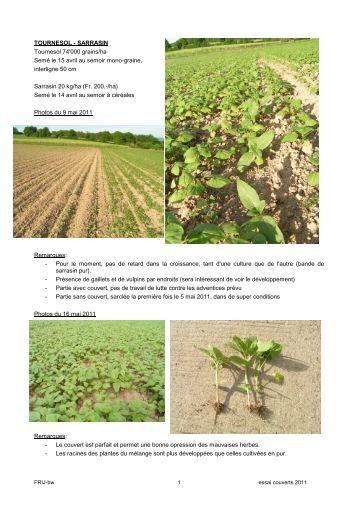 Fiche tournesol serin for Chambre agriculture indre