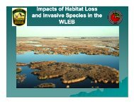 Impacts of Habitat Loss and Invasive Species - Western Lake Erie ...