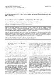 scarica pdf 1644kb - Museo Tridentino di Scienze Naturali