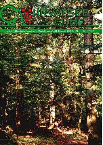 Šumski predjel Puhova jama (Crni lug) - Hrvatske šume