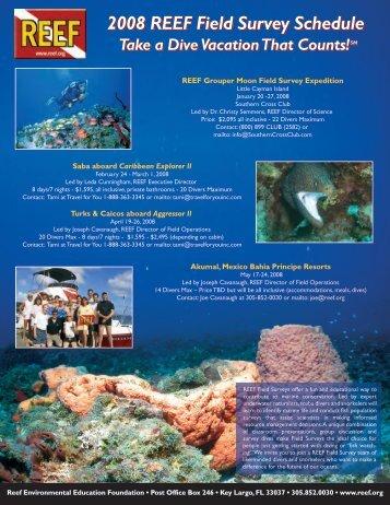 here - Reef