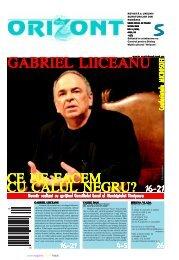 revistaorizont.ro