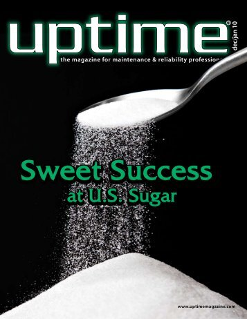 Sweet Success at U.S. Sugar (PDF) - Life Cycle Engineering