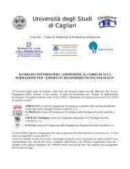 Facoltà di Scienze Matematiche Fisiche e Naturali - Ingegneria per l ...