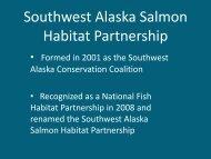 Southwest Alaska Salmon Habitat Partnership - National Fish ...