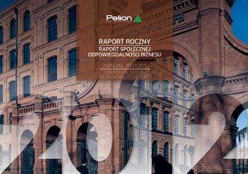 RAPORT ROCZNY - Pelion.eu