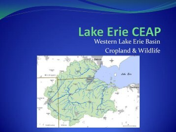 Western Lake Erie Basin Cropland & Wildlife
