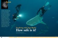 Freediving with Tiger Sharks :: X-RAY Magazine :: Issue 18 - 2007