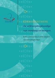 37257 NIVEL-Kennissynthese De wijkverpleegkundige van vandaag en morgen