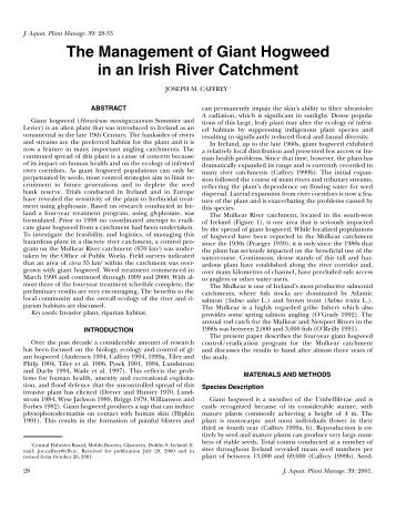 The Management of Giant Hogweed in an Irish River Catchment. J ...