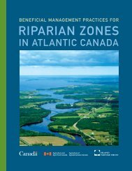 Beneficial Management Practices for Riparian Zones in Atlantic ...