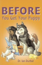 Before You Get Your Puppy - Big Dogs Big Hearts