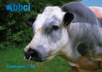 Catalogue 2010 - Proximedia