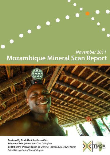 Report on Mining and Mineral Sector in Mozambique - TradeMark ...