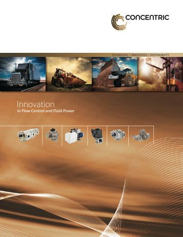Global Capability Brochure - Concentric