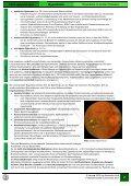 Arterielle Hypertonie - alexander-joerk.de - Seite 2