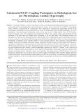 Calcineurin/NFAT Coupling Participates in Pathological, but not ... - Page 2
