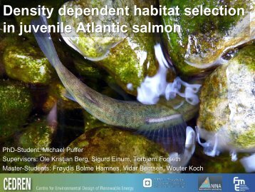 Density dependent habitat selection in juvenile ... - Energi Norge