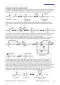 Reazioni di aldeidi e chetoni - PianetaChimica.it - Page 4