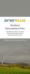 Dividend Reinvestment Plan - January 2011 - Enerplus