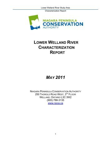 Lower Welland River Characterization Report - Niagara Peninsula ...