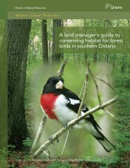 A land manager's guide to conserving habitat for forest birds in ...