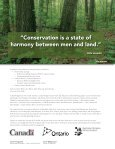 A land manager's guide to conserving habitat for forest birds in ... - Page 2