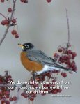 A land manager's guide to conserving habitat for forest birds in ... - Page 4