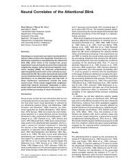 Neural Correlates of the Attentional Blink - Marvin Chun's Visual ...