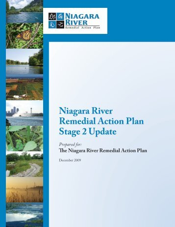 Niagara River Remedial Action Plan Stage 2 Update Report