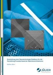 Entwicklung einer Nanotechnologie-Plattform für die ... - JuSER