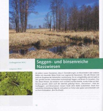 Seggen- und binsenreiche Nasswiesen - mugv.brandenburg.de