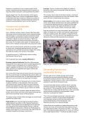 Humane egg and chicken production in Brazil - WSPA - Page 2