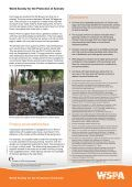 Humane egg and chicken production in Brazil - WSPA - Page 4